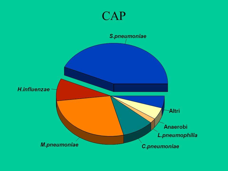 CAP S.pneumoniae H.influenzae Altri Anaerobi L.pneumophilia