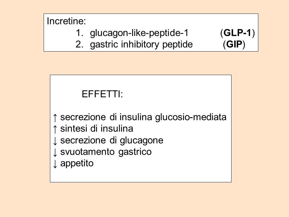 Incretine: glucagon-like-peptide-1 (GLP-1) gastric inhibitory peptide (GIP) EFFETTI: ↑ secrezione di insulina glucosio-mediata.