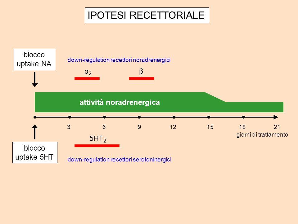 attività noradrenergica