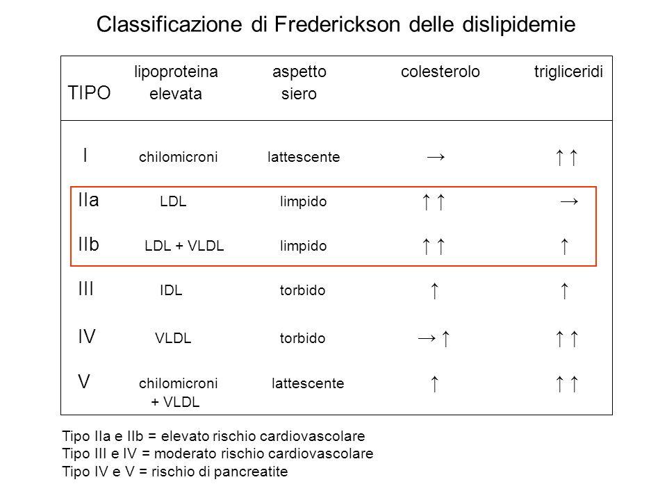 Classificazione di Frederickson delle dislipidemie