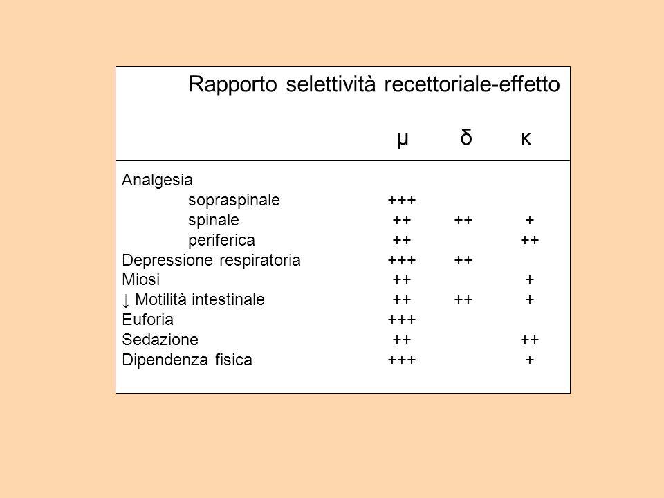 Rapporto selettività recettoriale-effetto