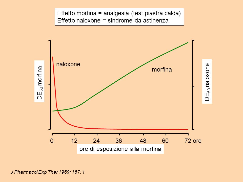 Effetto morfina = analgesia (test piastra calda)