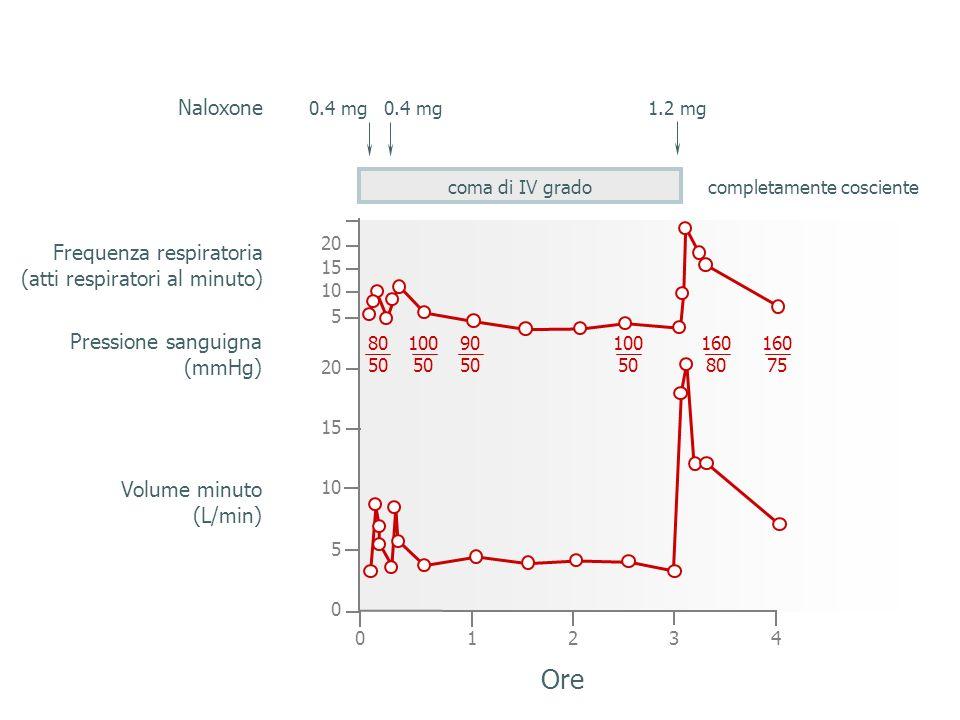 Ore Naloxone Frequenza respiratoria (atti respiratori al minuto)