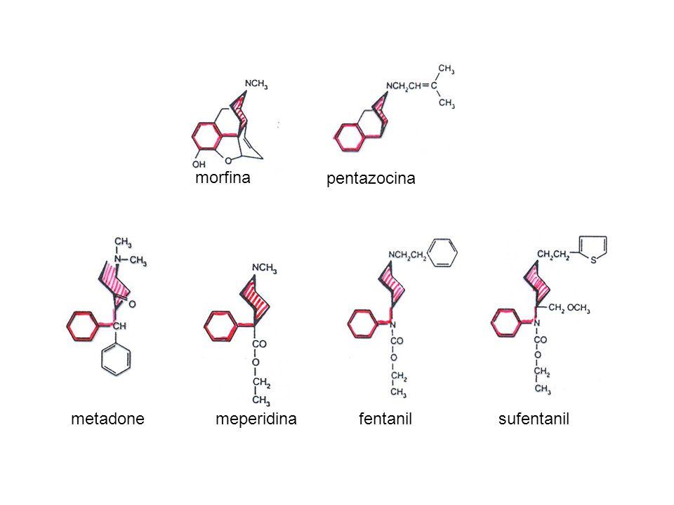 morfina pentazocina metadone meperidina fentanil sufentanil