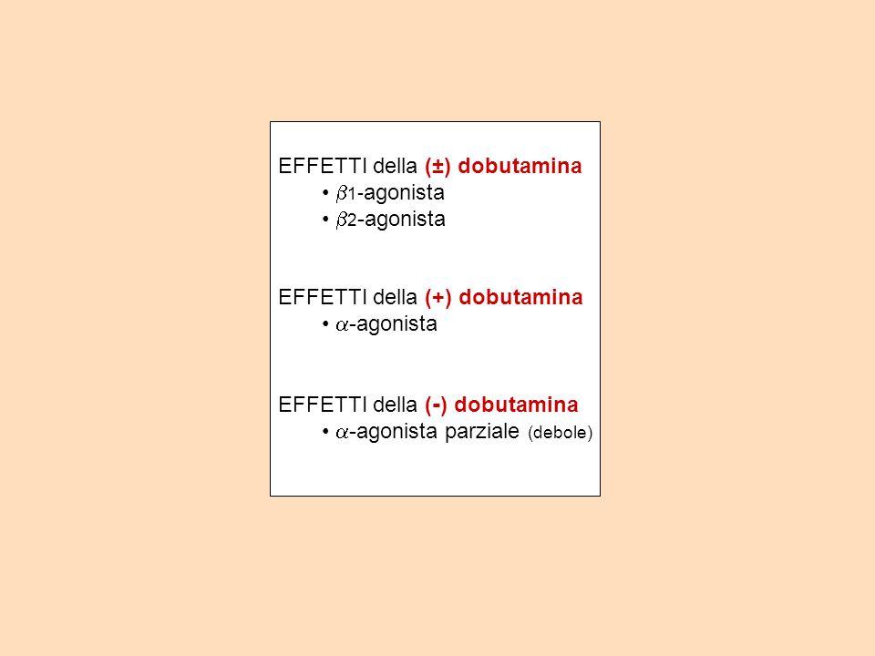 EFFETTI della (±) dobutamina