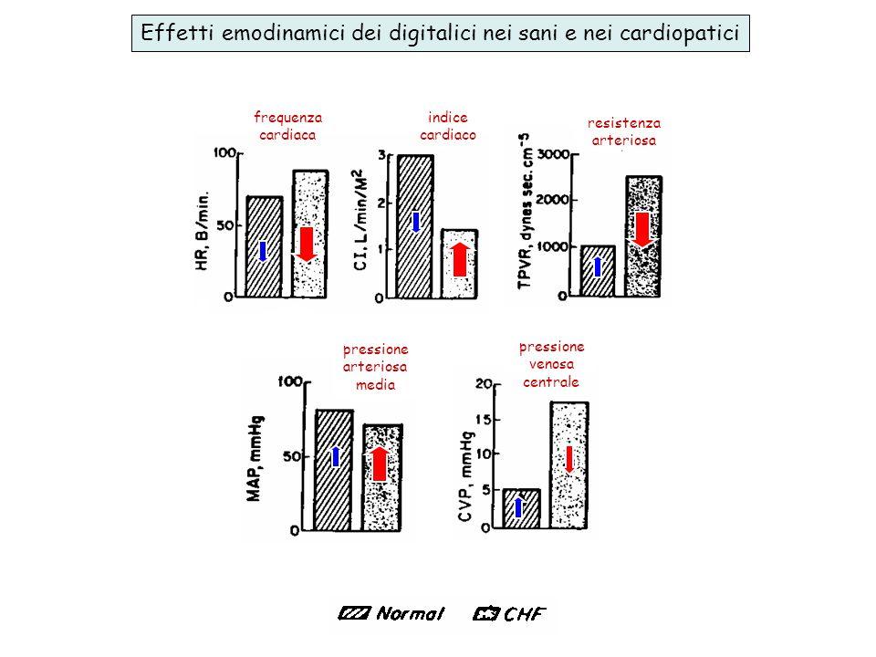 Effetti emodinamici dei digitalici nei sani e nei cardiopatici