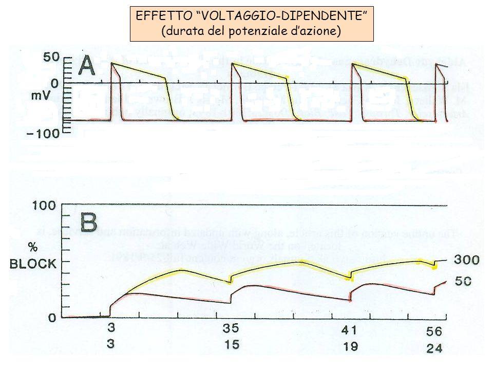EFFETTO VOLTAGGIO-DIPENDENTE (durata del potenziale d'azione)