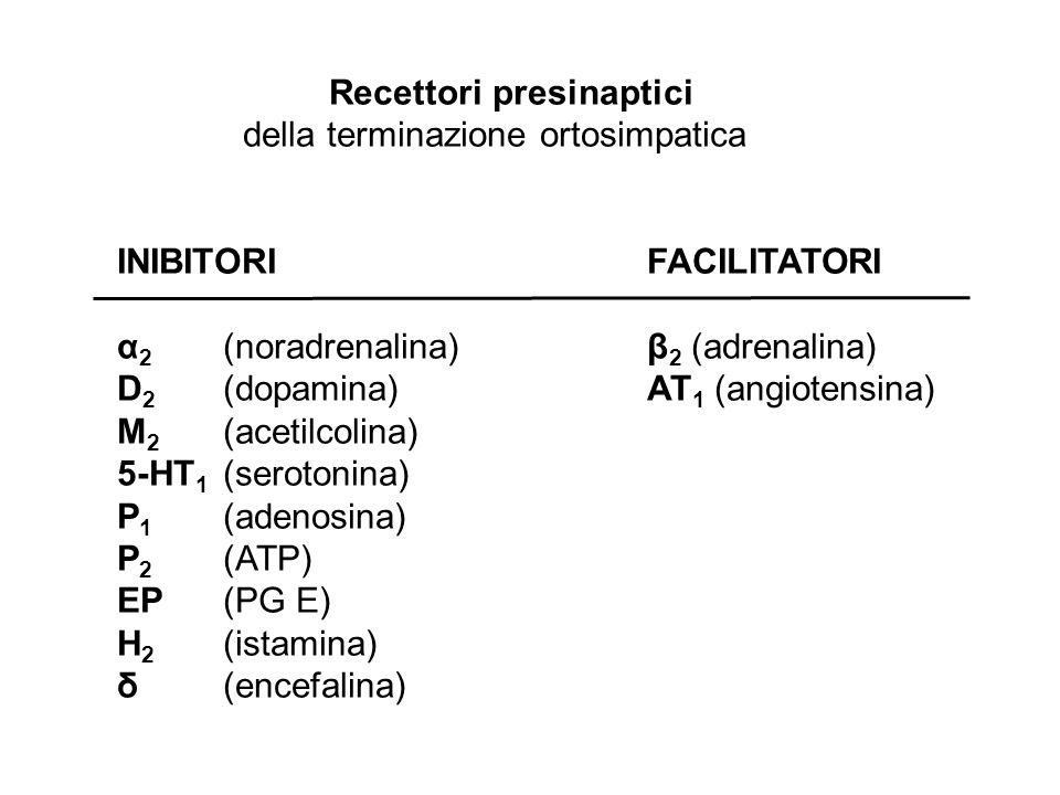 Recettori presinaptici