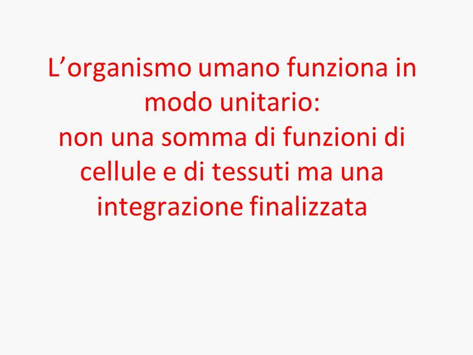 L'organismo umano funziona in modo unitario: non una somma di funzioni di cellule e di tessuti ma una integrazione finalizzata