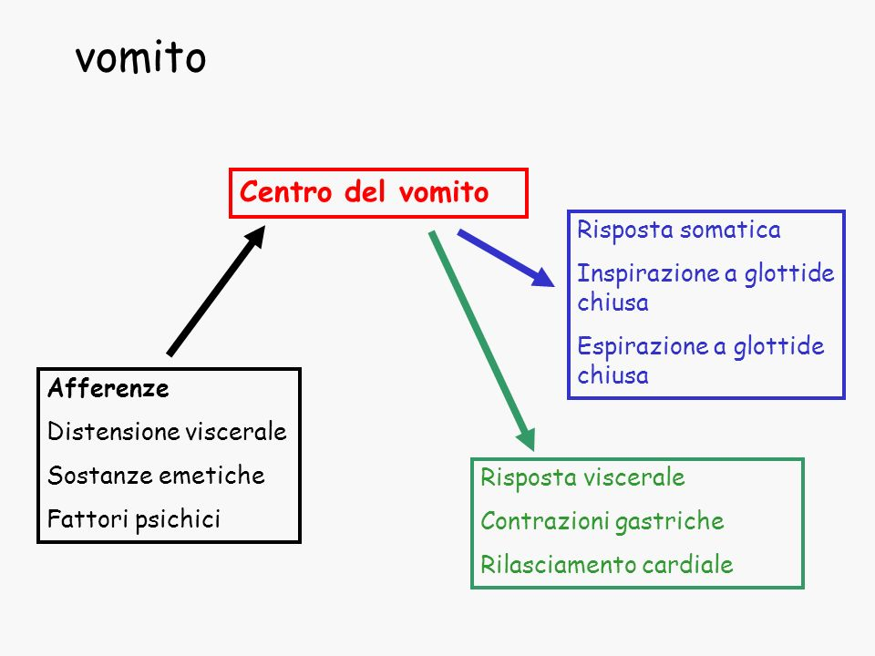 vomito Centro del vomito Risposta somatica