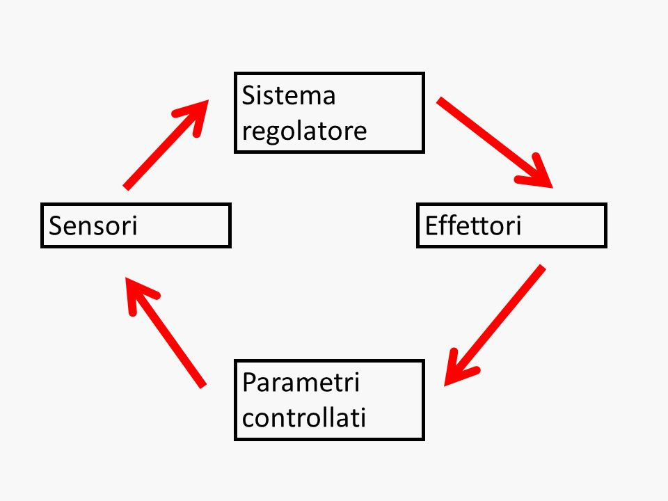 Sistema regolatore Sensori Effettori Parametri controllati