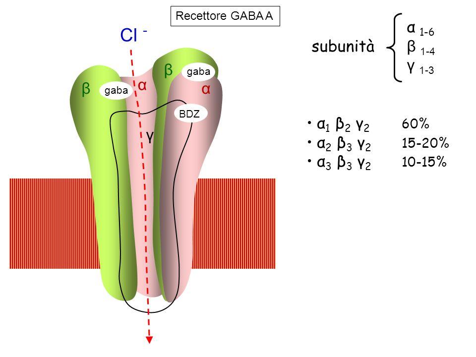 Cl - α 1-6 subunità β 1-4 γ 1-3 β α β α α1 β2 γ2 60% α2 β3 γ2 15-20%