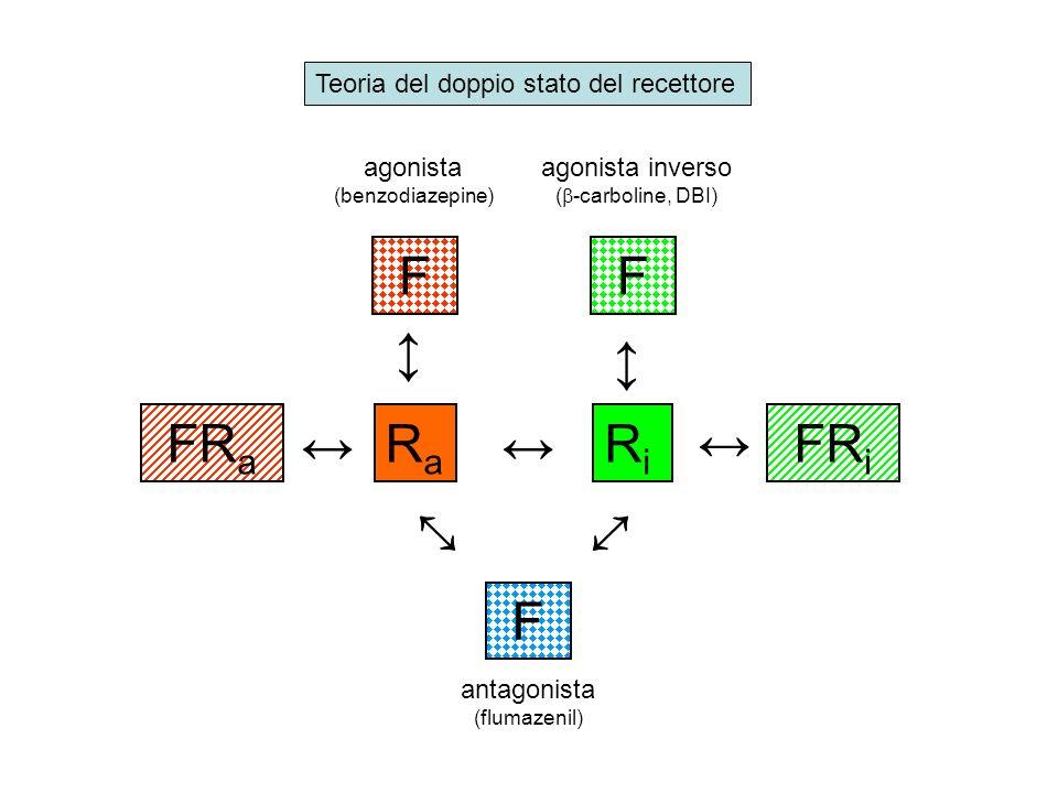 Ra Ri ↔ F FRa FRi Teoria del doppio stato del recettore agonista