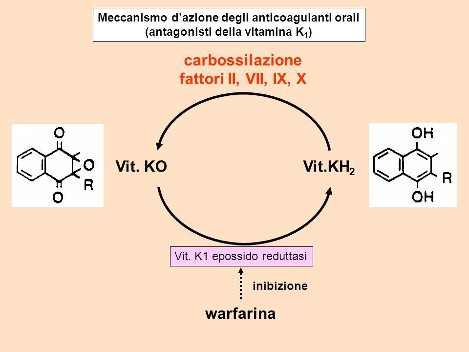 carbossilazione fattori II, VII, IX, X