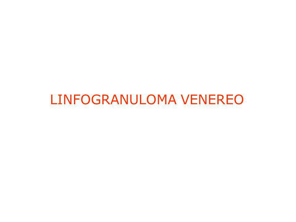 LINFOGRANULOMA VENEREO