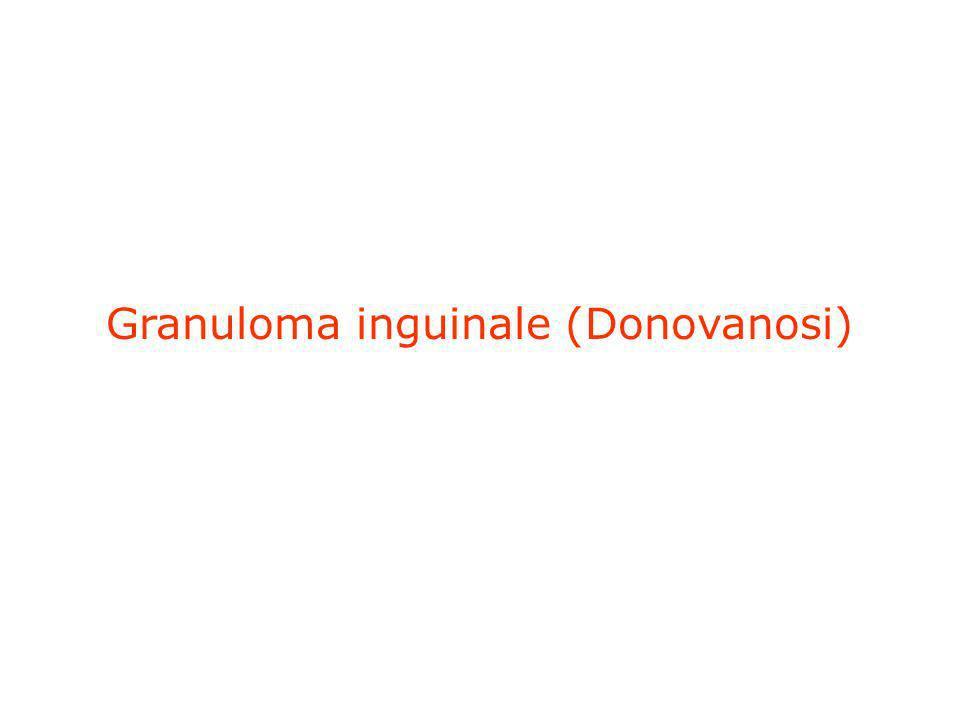 Granuloma inguinale (Donovanosi)