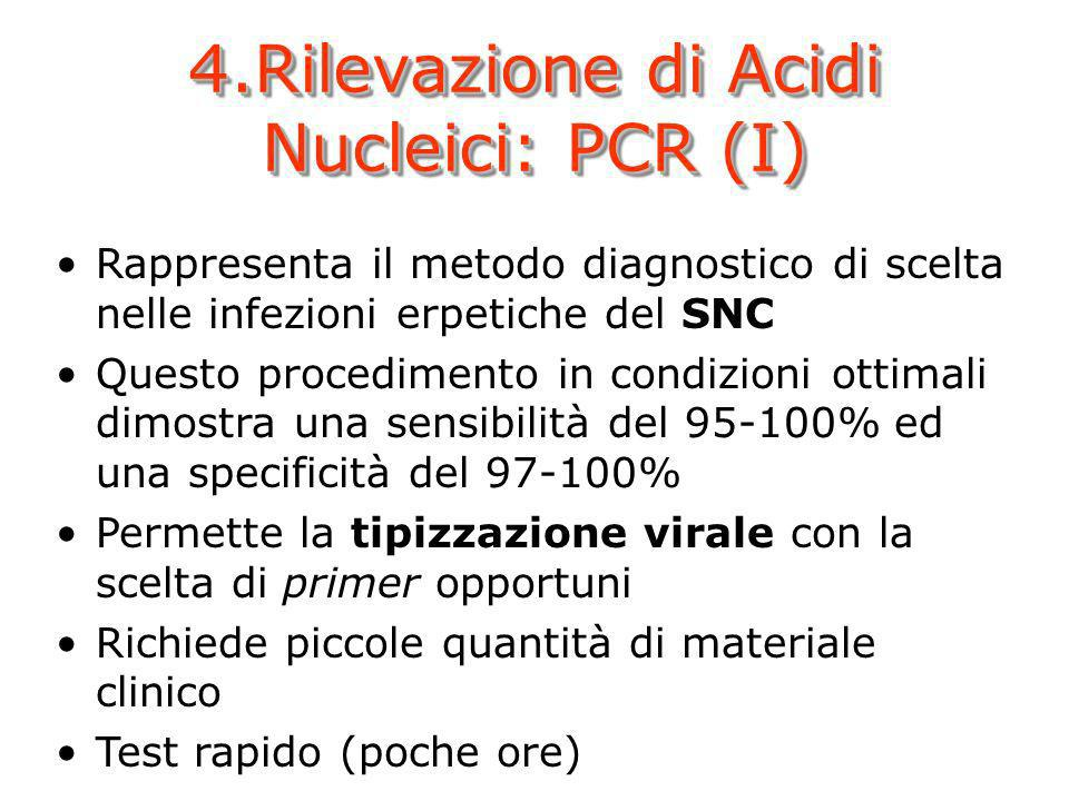 4.Rilevazione di Acidi Nucleici: PCR (I)