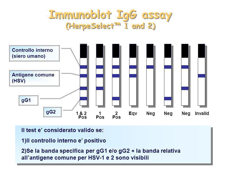 Immunoblot IgG assay (HerpeSelect™ 1 and 2)