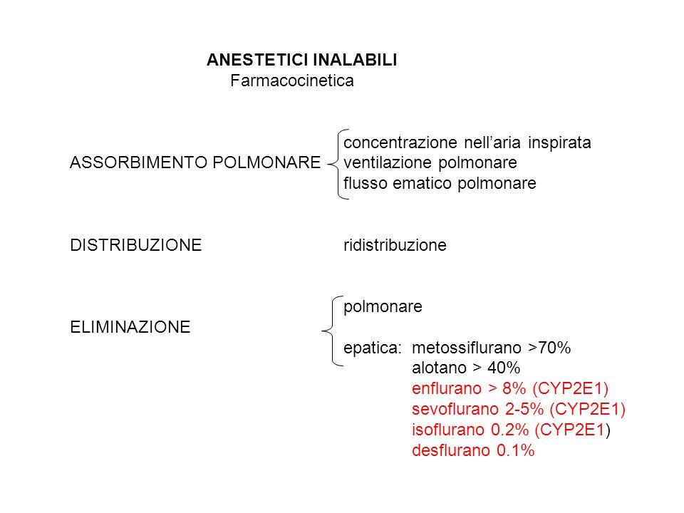 ANESTETICI INALABILI Farmacocinetica. concentrazione nell'aria inspirata. ASSORBIMENTO POLMONARE ventilazione polmonare.