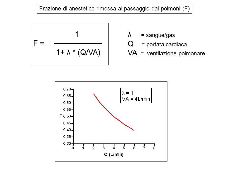 VA = ventilazione polmonare