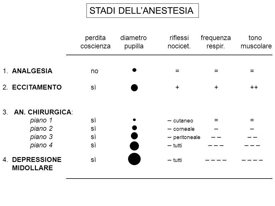 STADI DELL'ANESTESIA perdita diametro riflessi frequenza tono
