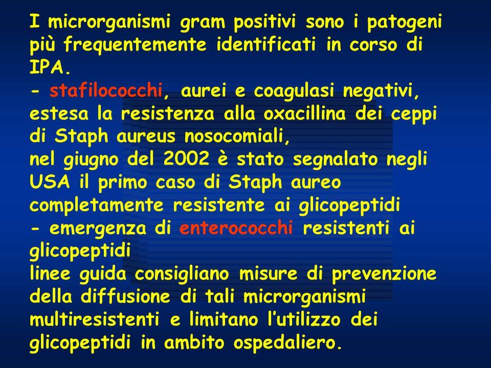 I microrganismi gram positivi sono i patogeni più frequentemente identificati in corso di IPA.