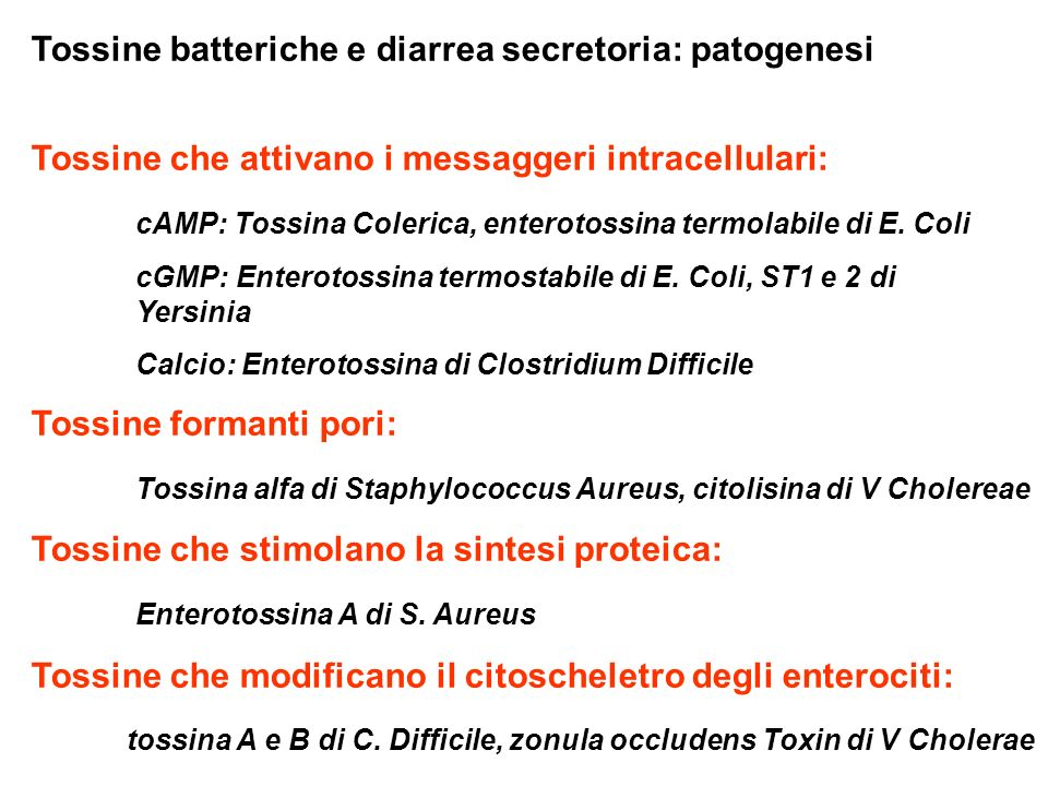 Tossine batteriche e diarrea secretoria: patogenesi