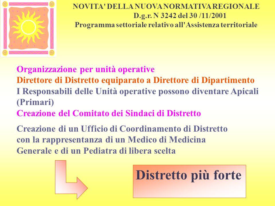 Distretto più forte Organizzazione per unità operative