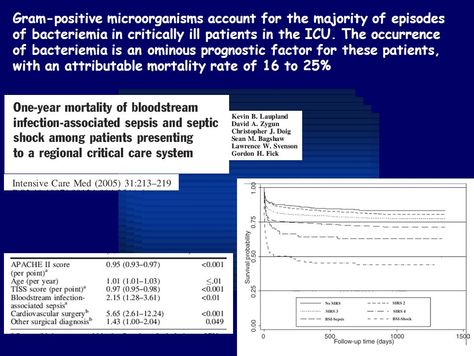 Gram-positive microorganisms account for the majority of episodes of bacteriemia in critically ill patients in the ICU.