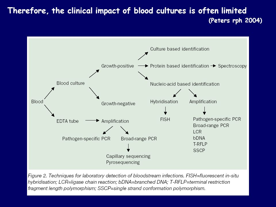 Therefore, the clinical impact of blood cultures is often limited