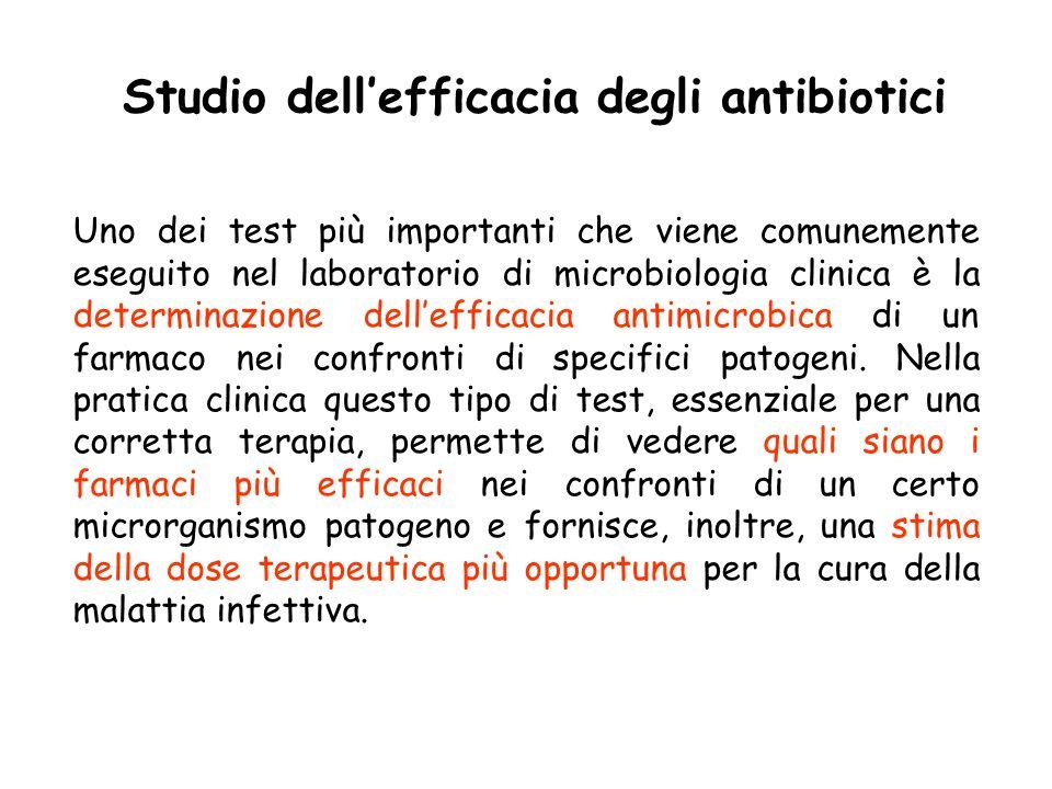 Studio dell'efficacia degli antibiotici