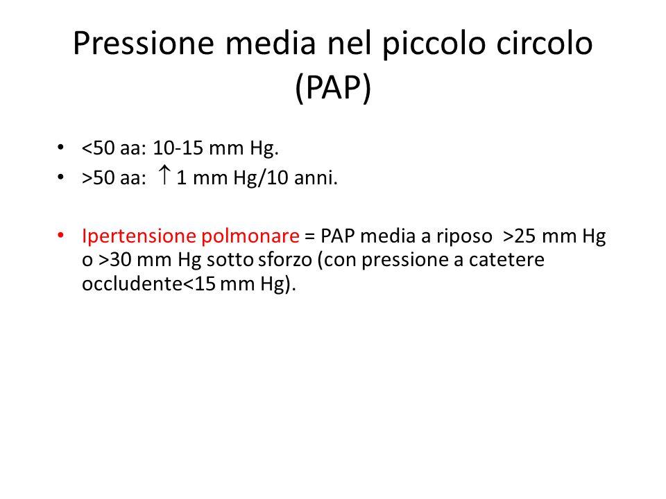Pressione media nel piccolo circolo (PAP)