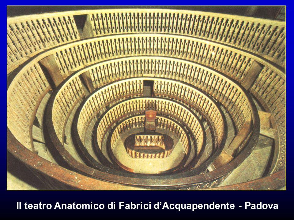 Il teatro Anatomico di Fabrici d'Acquapendente - Padova