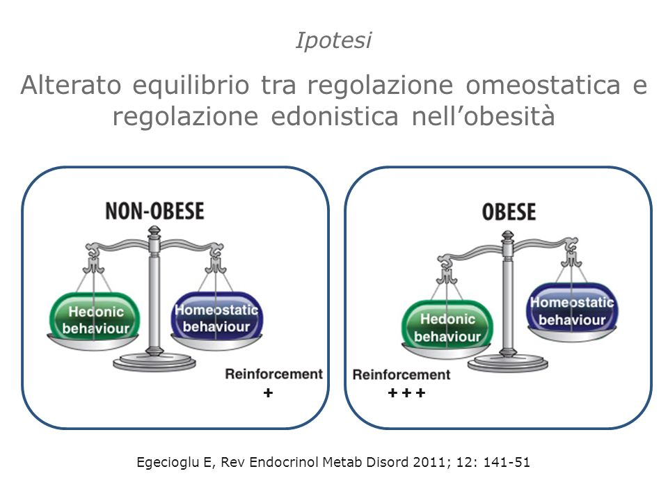 Egecioglu E, Rev Endocrinol Metab Disord 2011; 12: 141-51