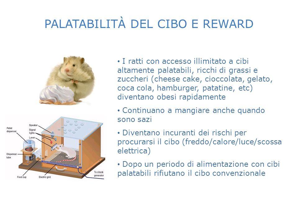 PALATABILITÀ DEL CIBO E REWARD