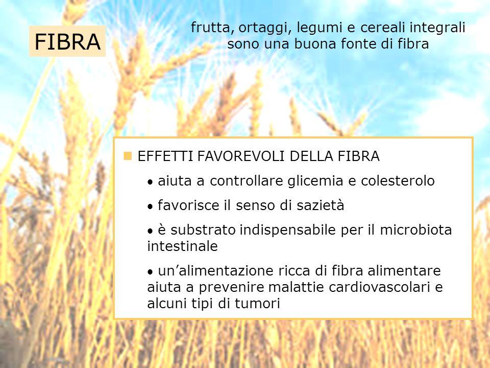frutta, ortaggi, legumi e cereali integrali sono una buona fonte di fibra