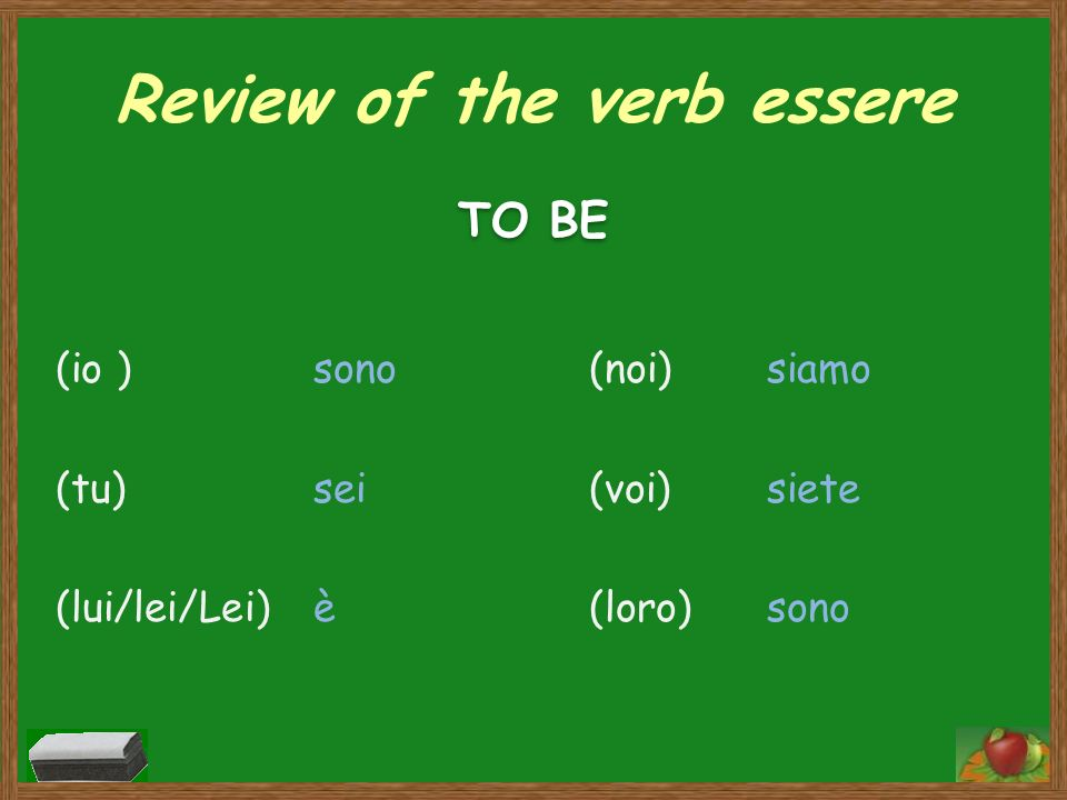 Review of the verb essere