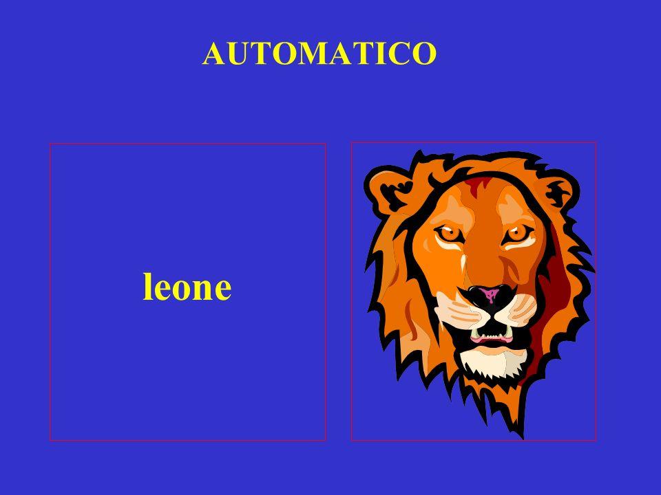 AUTOMATICO leone