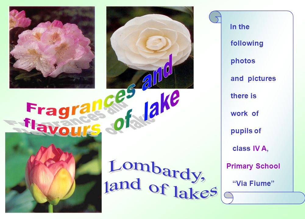 Fragrances and flavours of lake Lombardy, land of lakes In the