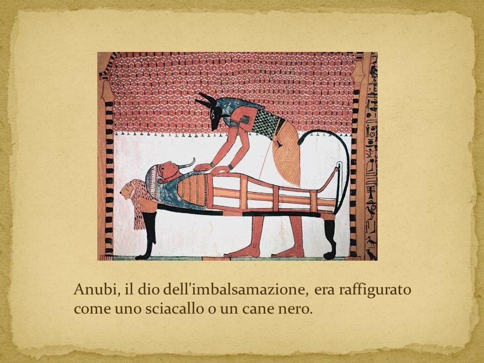 Anubi, il dio dell imbalsamazione, era raffigurato come uno sciacallo o un cane nero.