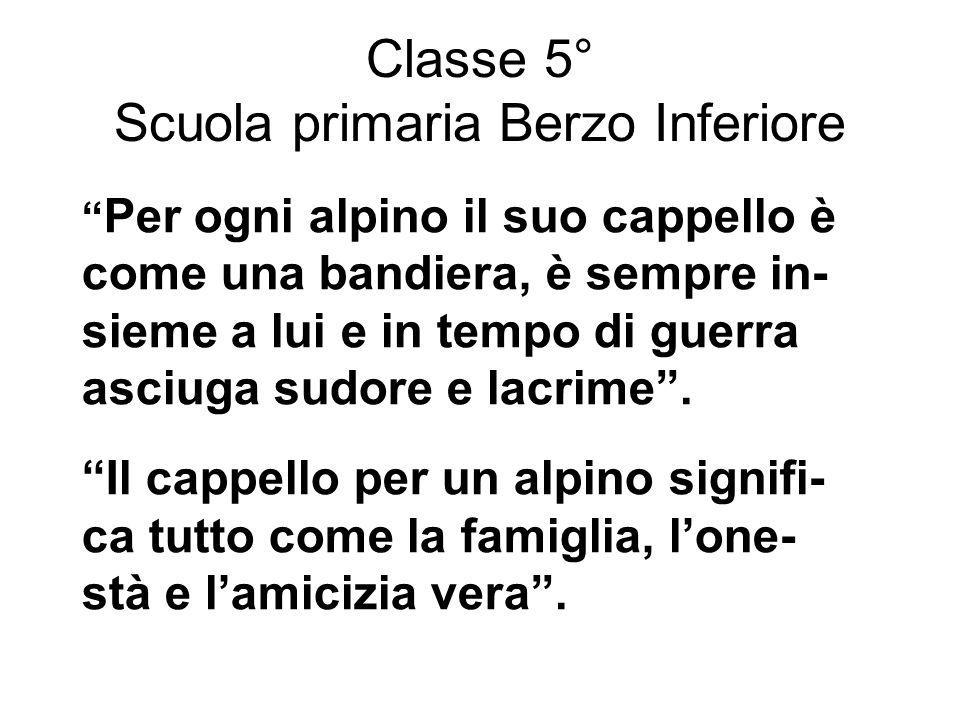 Classe 5° Scuola primaria Berzo Inferiore