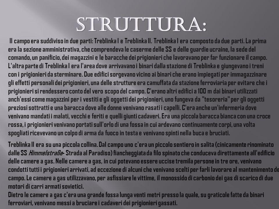 STRUTTURA: