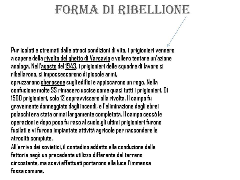 FORMA DI RIBELLIONE