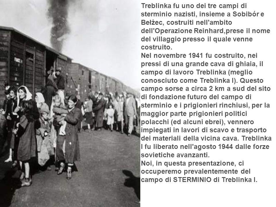 Treblinka fu uno dei tre campi di sterminio nazisti, insieme a Sobibór e Bełżec, costruiti nell ambito dell Operazione Reinhard,prese il nome del villaggio presso il quale venne costruito.