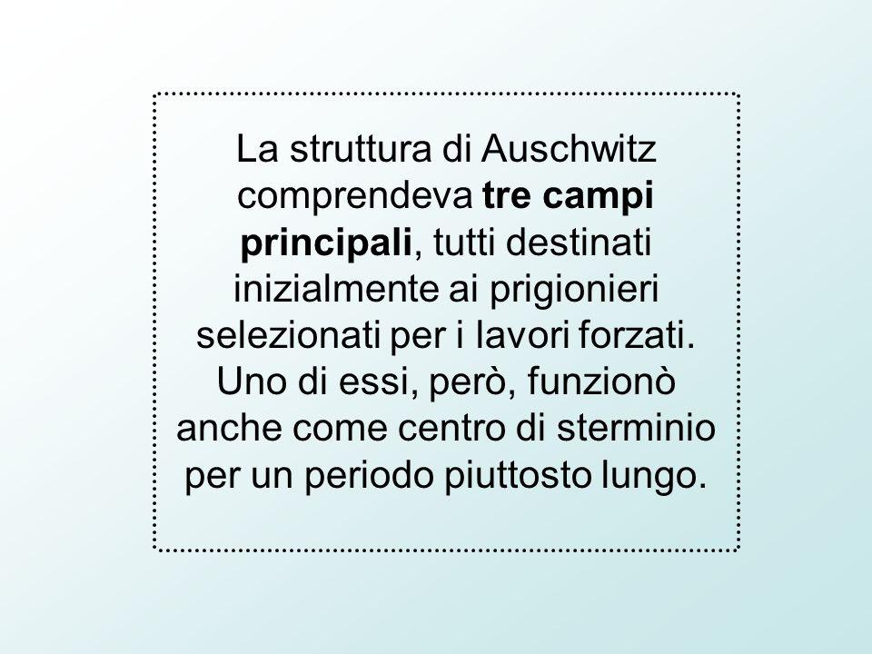 La struttura di Auschwitz comprendeva tre campi principali, tutti destinati inizialmente ai prigionieri selezionati per i lavori forzati.