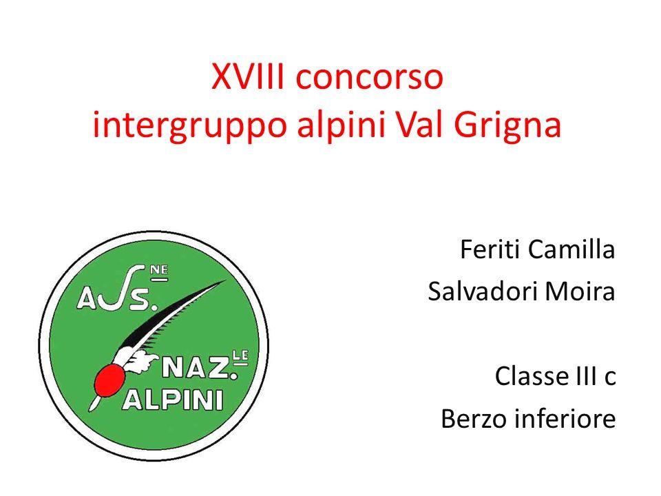 XVIII concorso intergruppo alpini Val Grigna