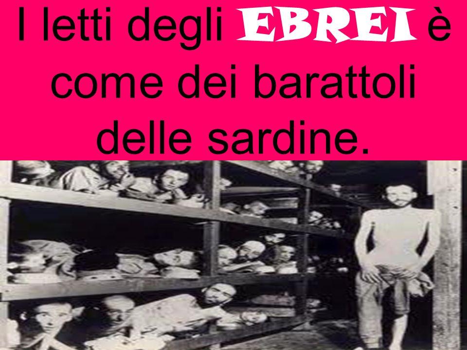 I letti degli EBREI è come dei barattoli delle sardine.