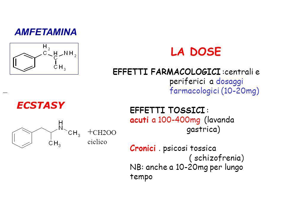 LA DOSE AMFETAMINA ECSTASY +CH2OO