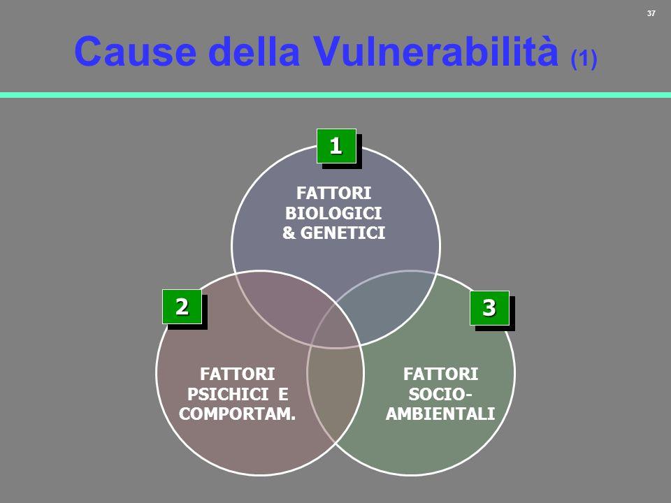 Cause della Vulnerabilità (1)