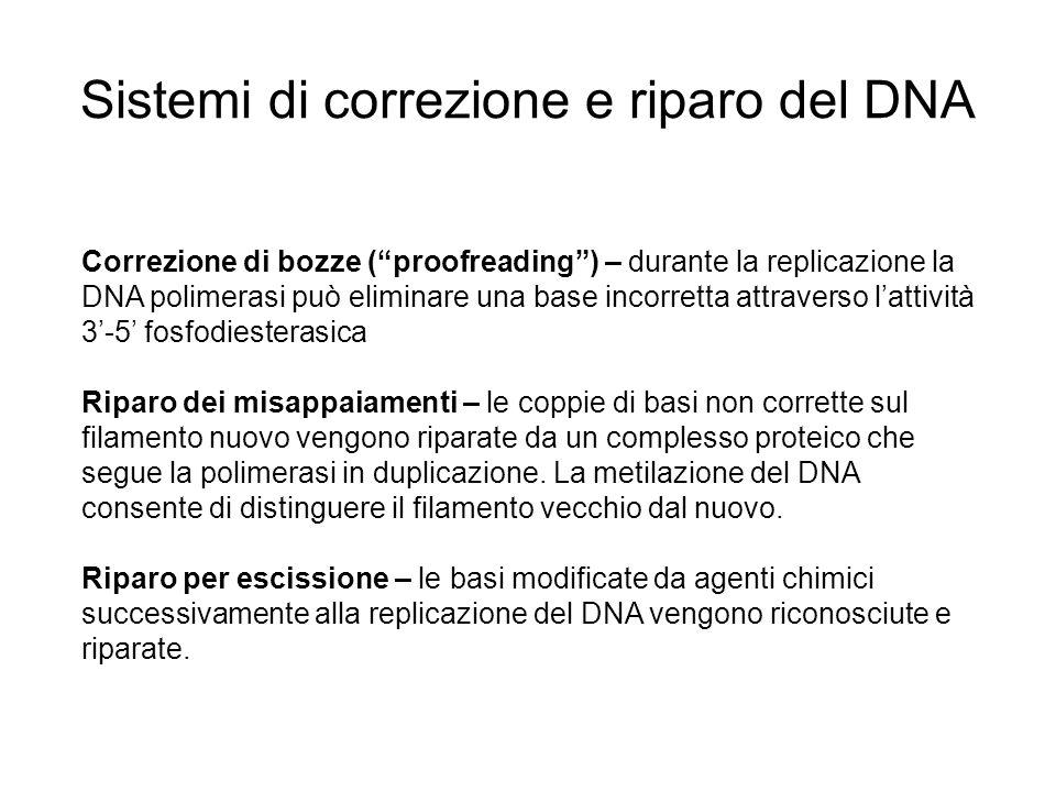 Sistemi di correzione e riparo del DNA